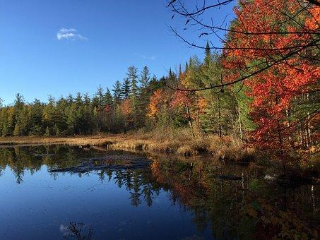 Reflections Pond Adirondacks Water Landsca
