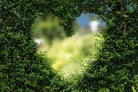 Heart, Herzchen, Love, Romance
