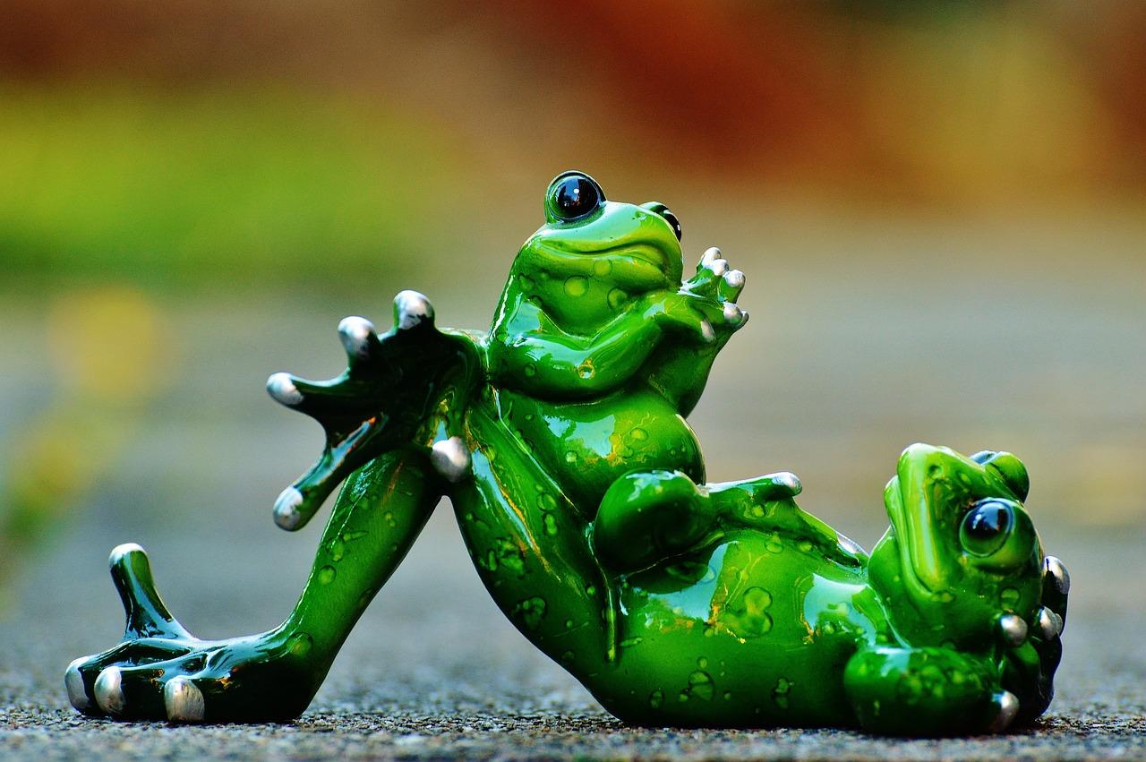 Картинка смешная лягушонок