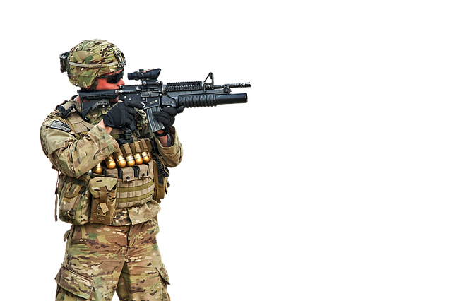 isolated soldier vote  u00b7 free photo on pixabay