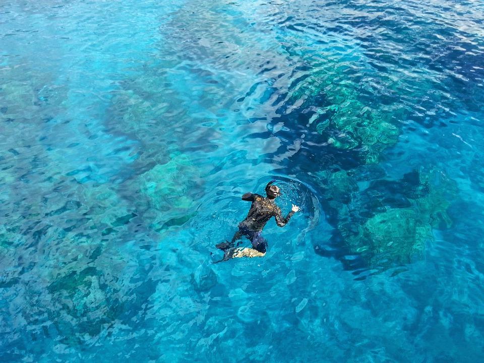 Snorkelling in Cocos island