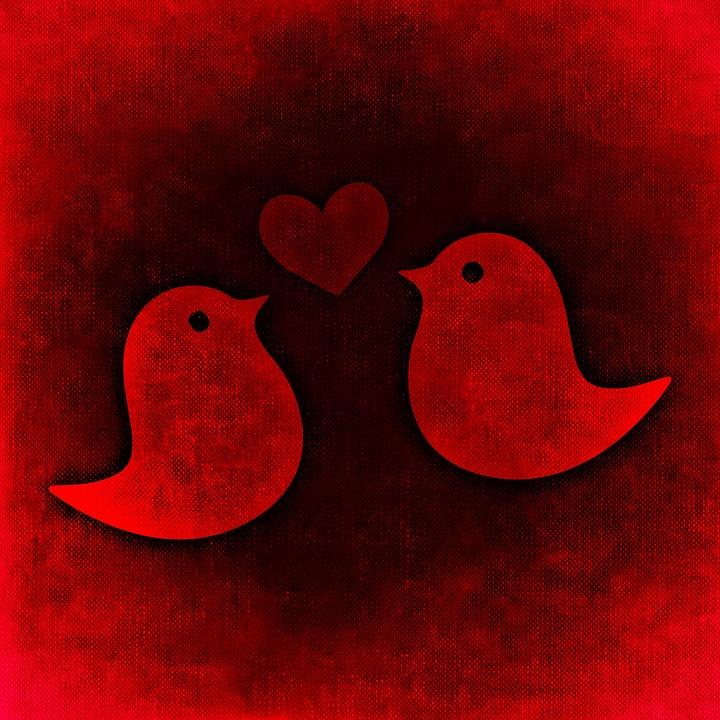 Love Valentine S Day Romance Free Image On Pixabay