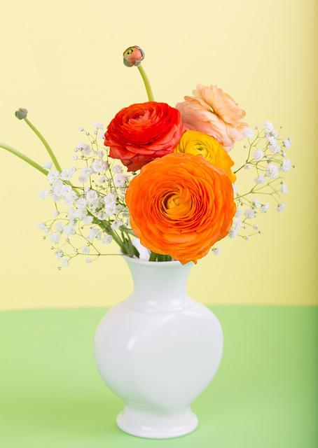 Flower Ranunculus Vase 183 Free Photo On Pixabay