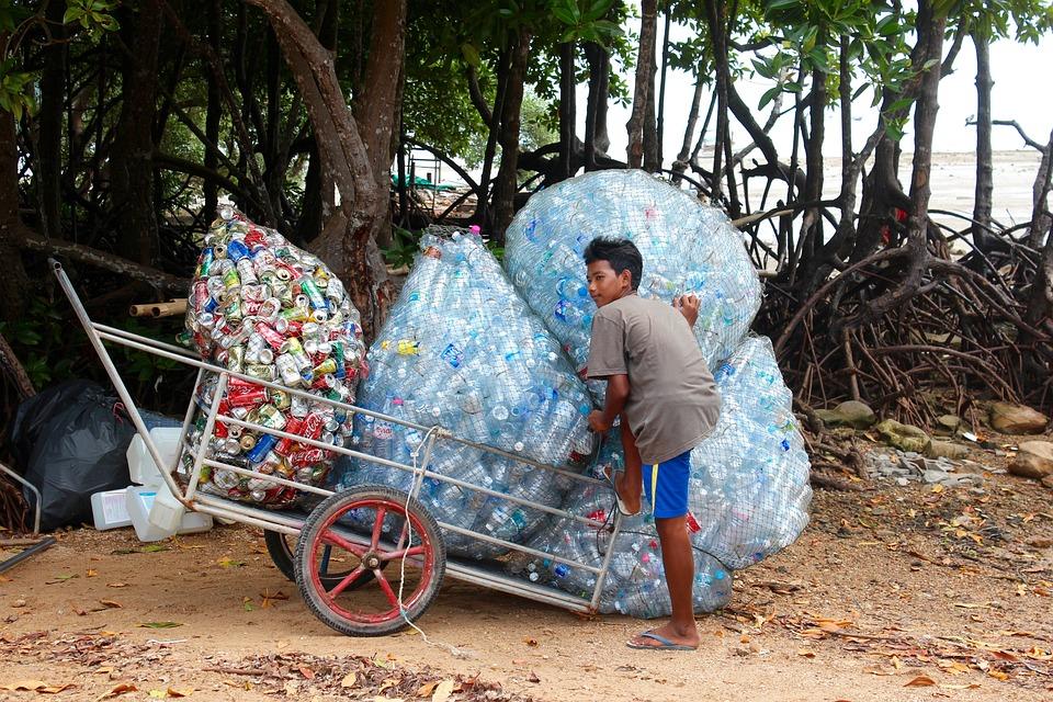 Garbage Collect Plasti...
