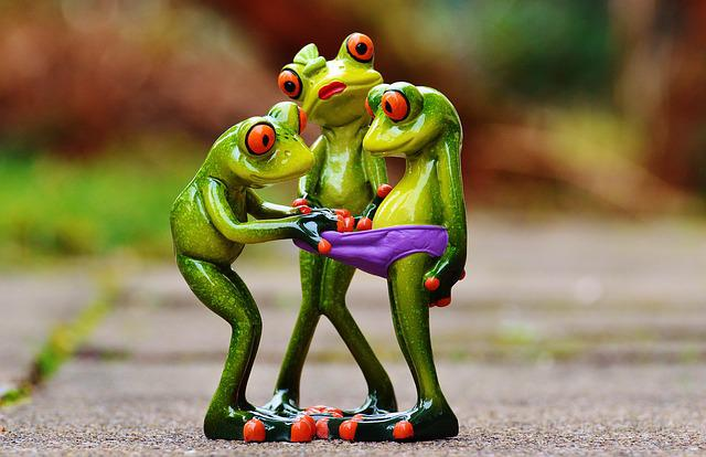 Free Photo Frogs, Curious, Funny, Figures - Free Image On -4000