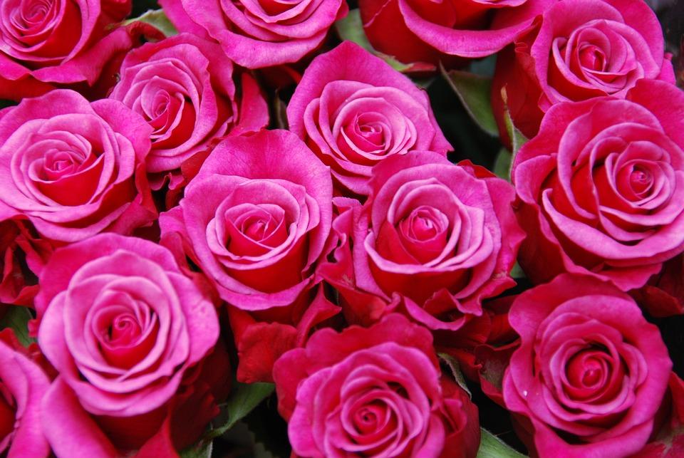 Flores Rosas Bouquet Foto Gratis En Pixabay