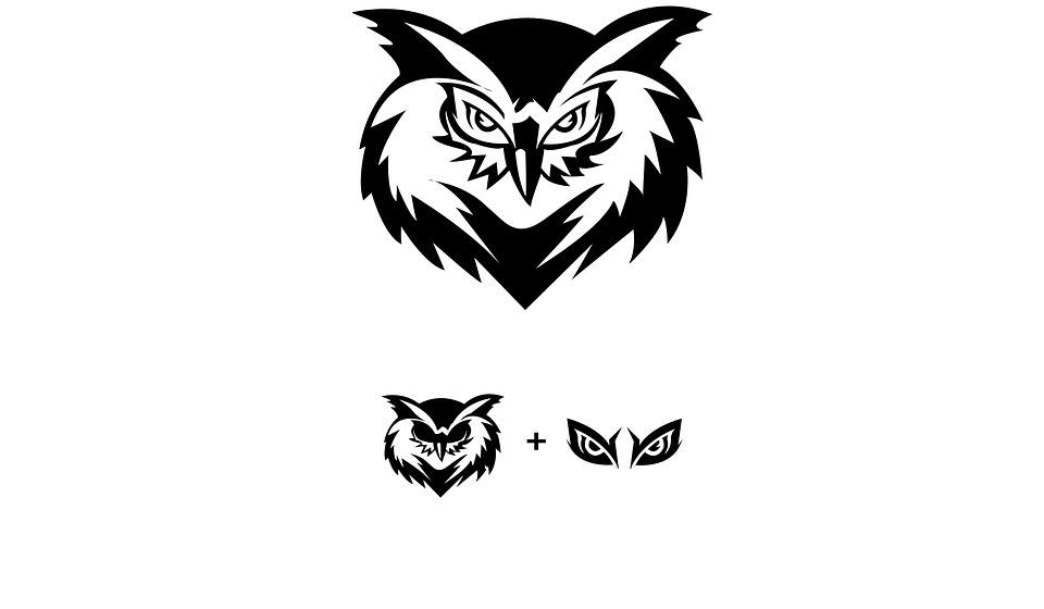 Owl Animal Bird Free Image On Pixabay