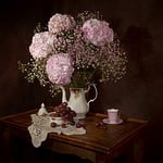 martwe natury, kwiaty, hortensja
