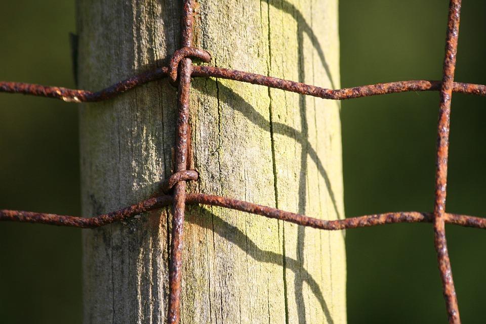 Pol Holz Draht · Kostenloses Foto auf Pixabay