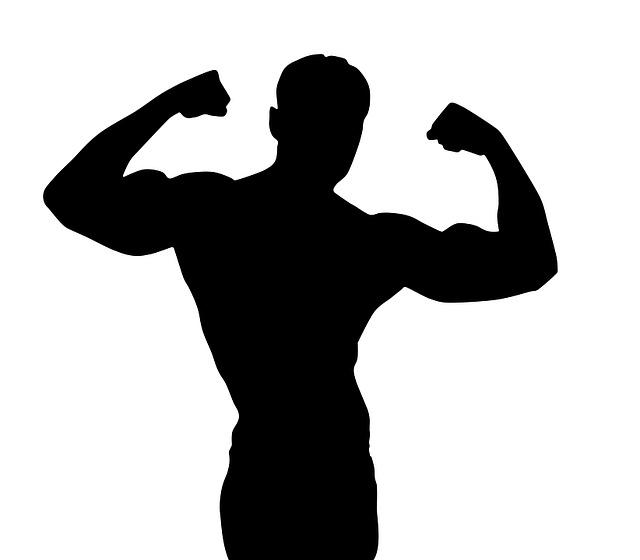 Pilates Bodybuilding Silhouette 183 Free Image On Pixabay