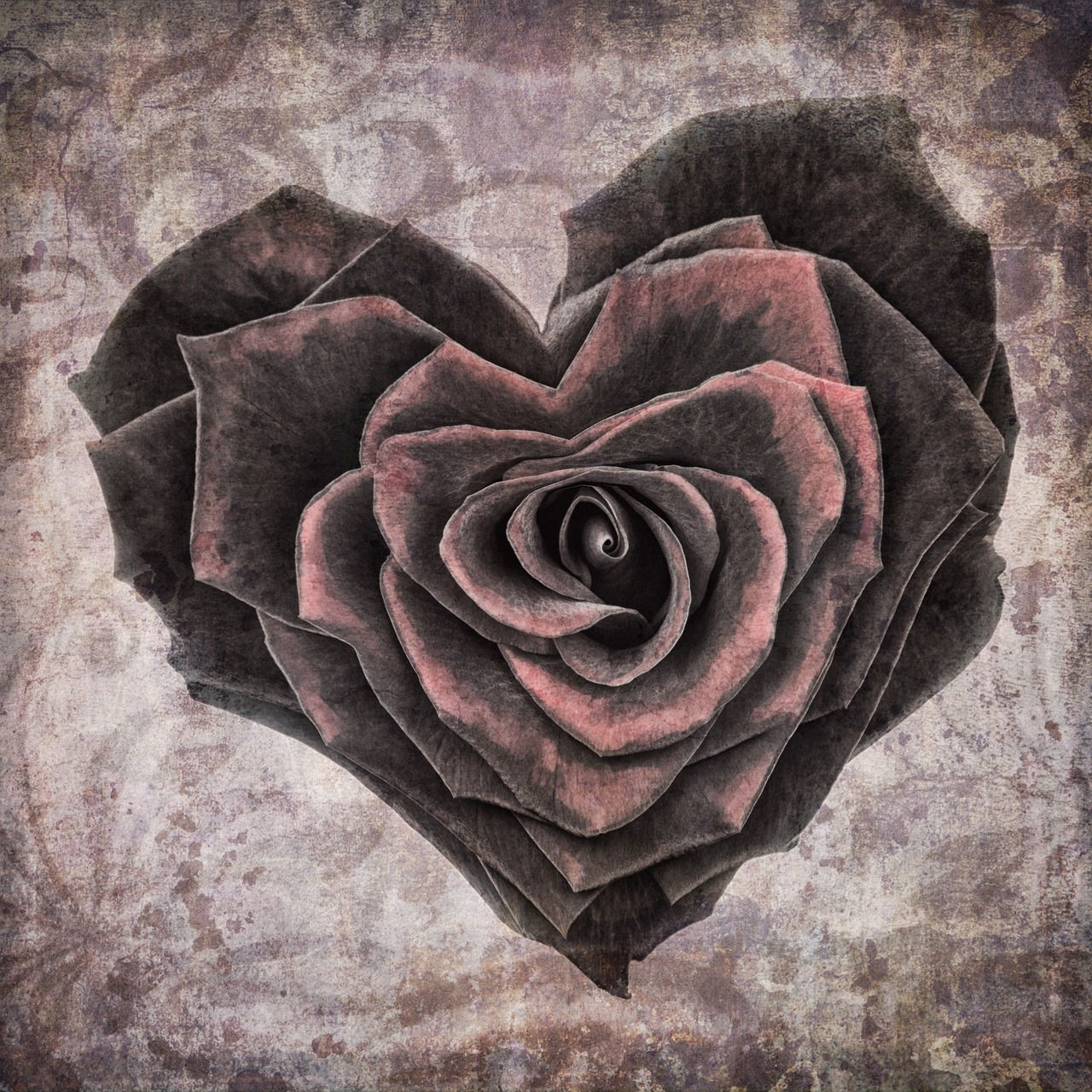 heart-1205291_1280.jpg