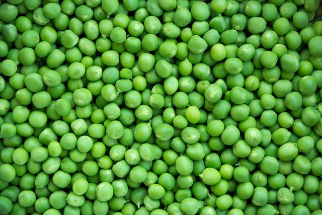 pea peas vegetables  u00b7 free photo on pixabay