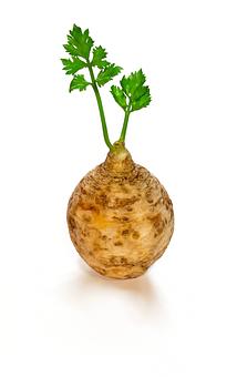 Celery, Vegetable, Food, Diet, Fresh