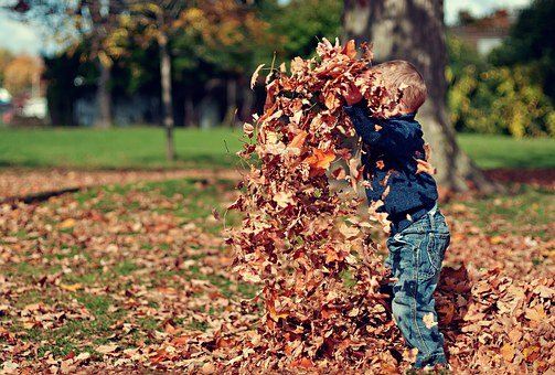 Boy, Playing, Leaves, Autumn, Child, Fun