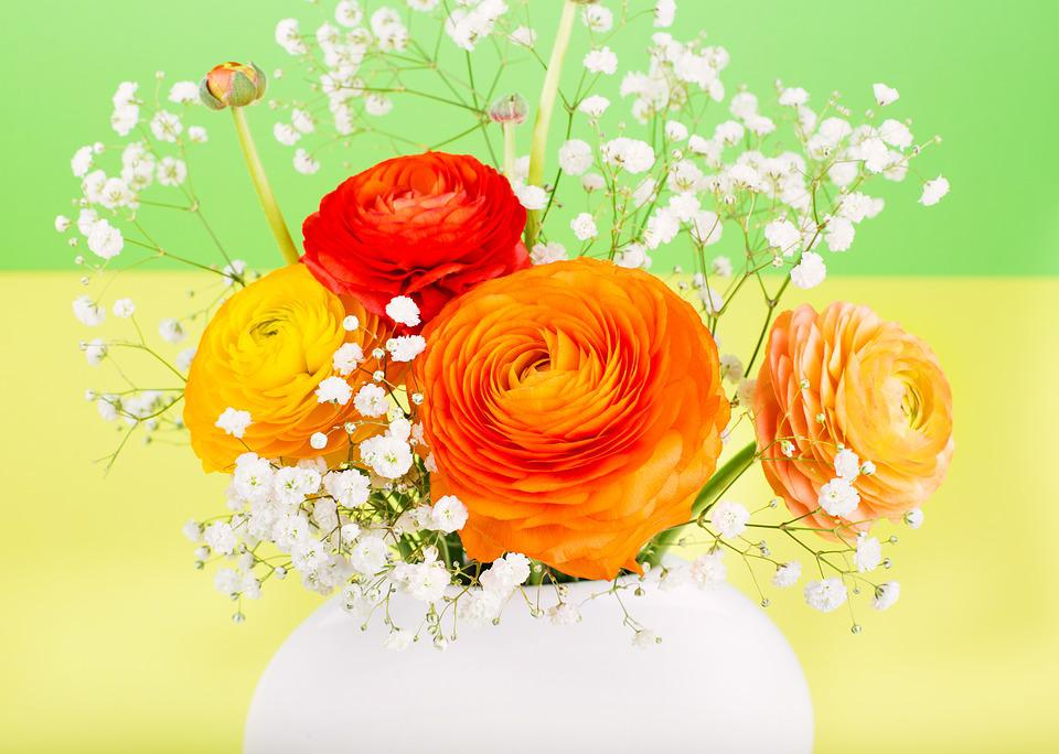 Flower Ranunculus Orange · Free photo on Pixabay on flower decoration, flower coloring pages, flower trash can, flower tissue box cover, flower plant, flower dinnerware set, flower decor, flower pot, flower crystal, flower punch set, flower bouquet, flower painting, flower arrangements, flower store, flower sign, flower window, flower basket, flower stand, flower container, flower gift,