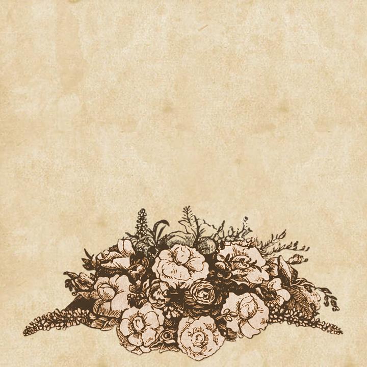 background drawing vintage free image on pixabay