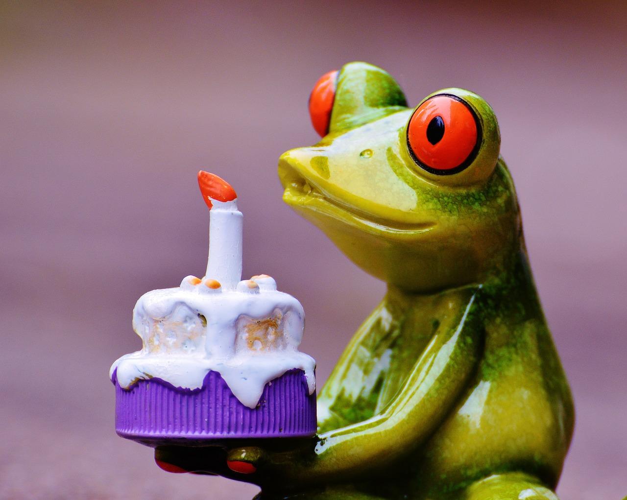 Жаба с днем рождения открытка, надписями