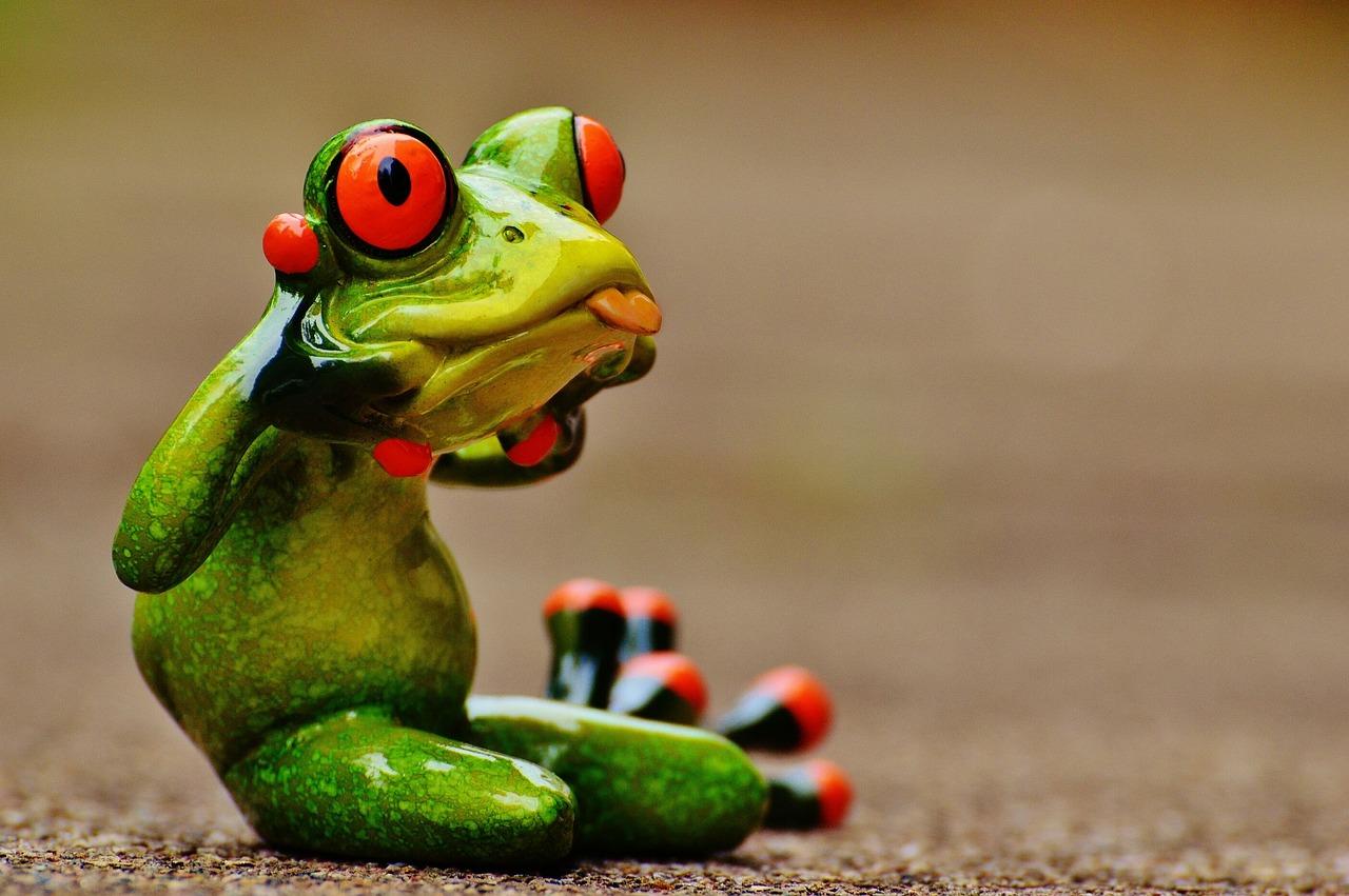 Картинка прикол жаба