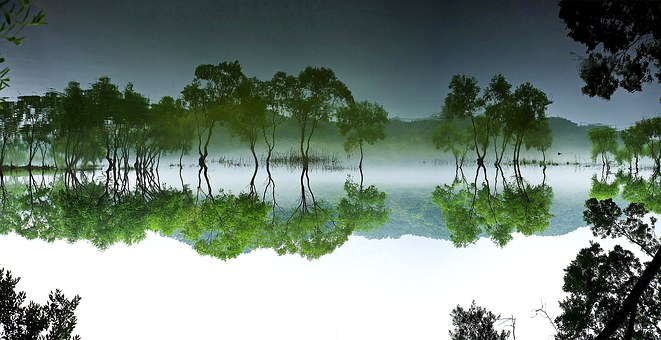 Daechung, Forest, Lake, Landscape, Water
