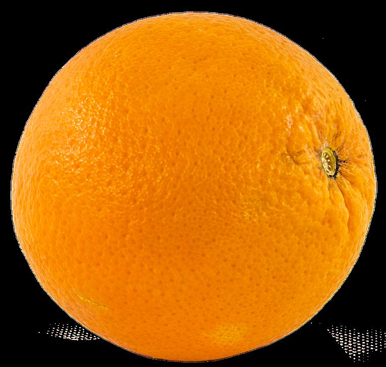 Fruit Orange Png Free Image On Pixabay The orange is the fruit of the citrus species citrus sinensis in the family rutaceae. fruit orange png free image on pixabay