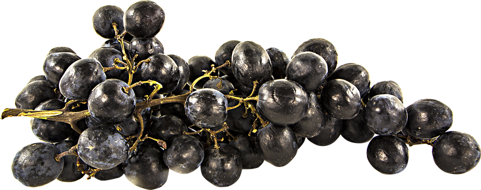 Assez Photo gratuite: Fruit, Raisins, Png, Détouré - Image gratuite sur  FM71