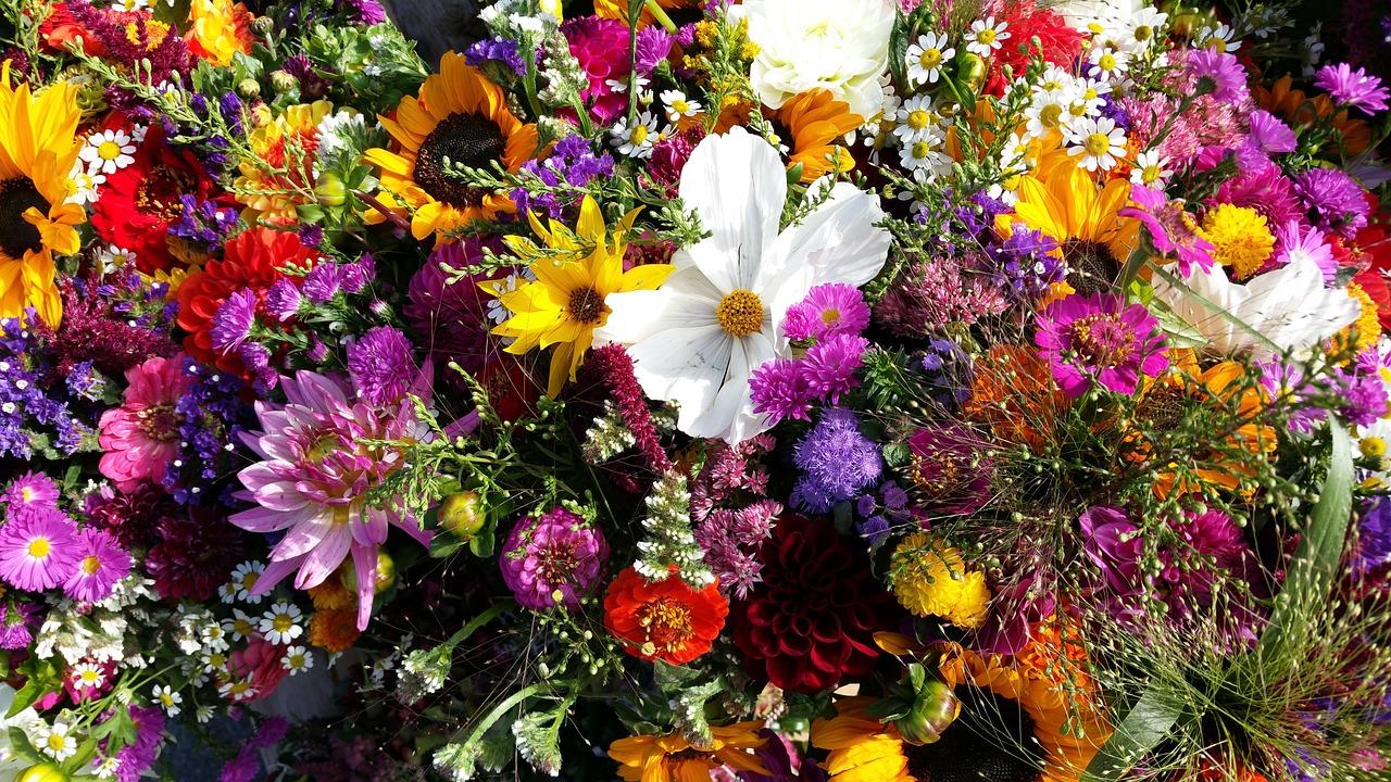 жоржа, охапка полевых цветов картинки красивые всего подвержены износу