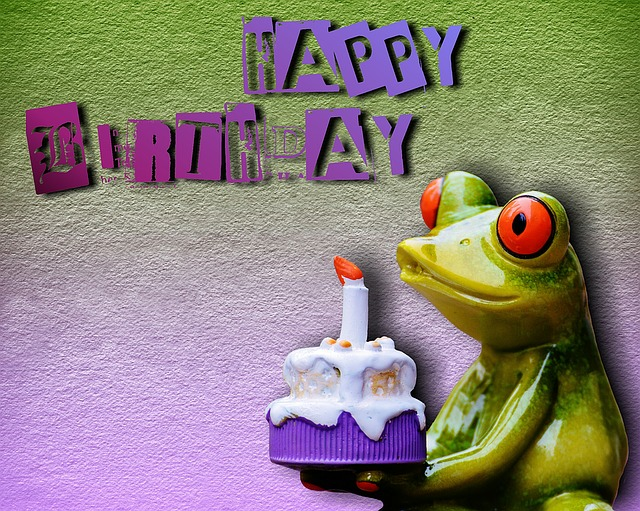 Happy Birthday Frog 183 Free Image On Pixabay