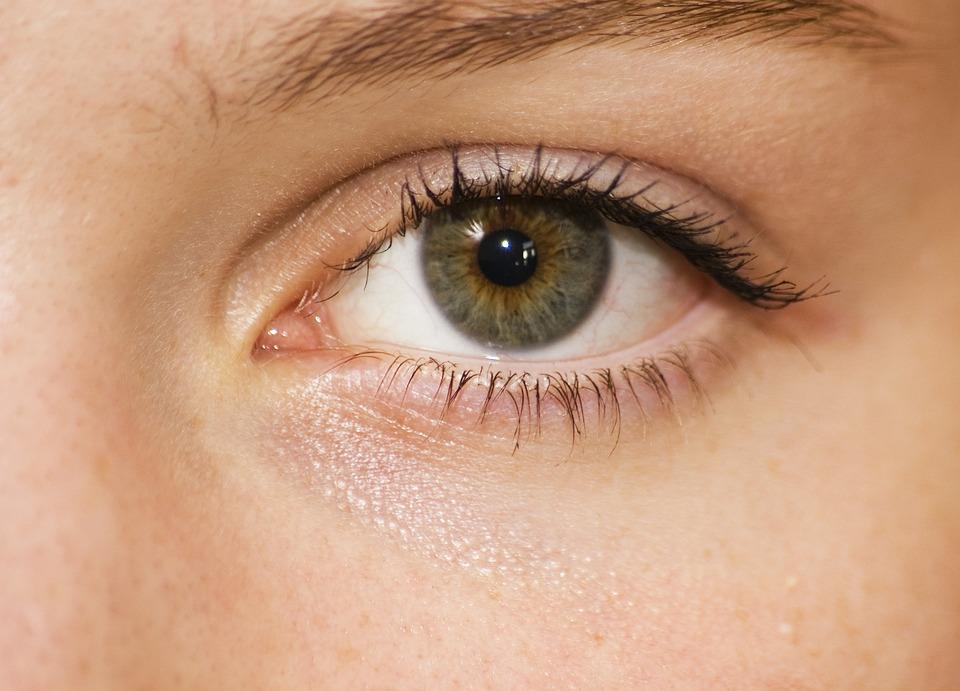 目, グリーン, 女の子, 閉じます, 顔, 皮膚, Eyelachs, 藻類, 子ども, 若い, 緑, 1