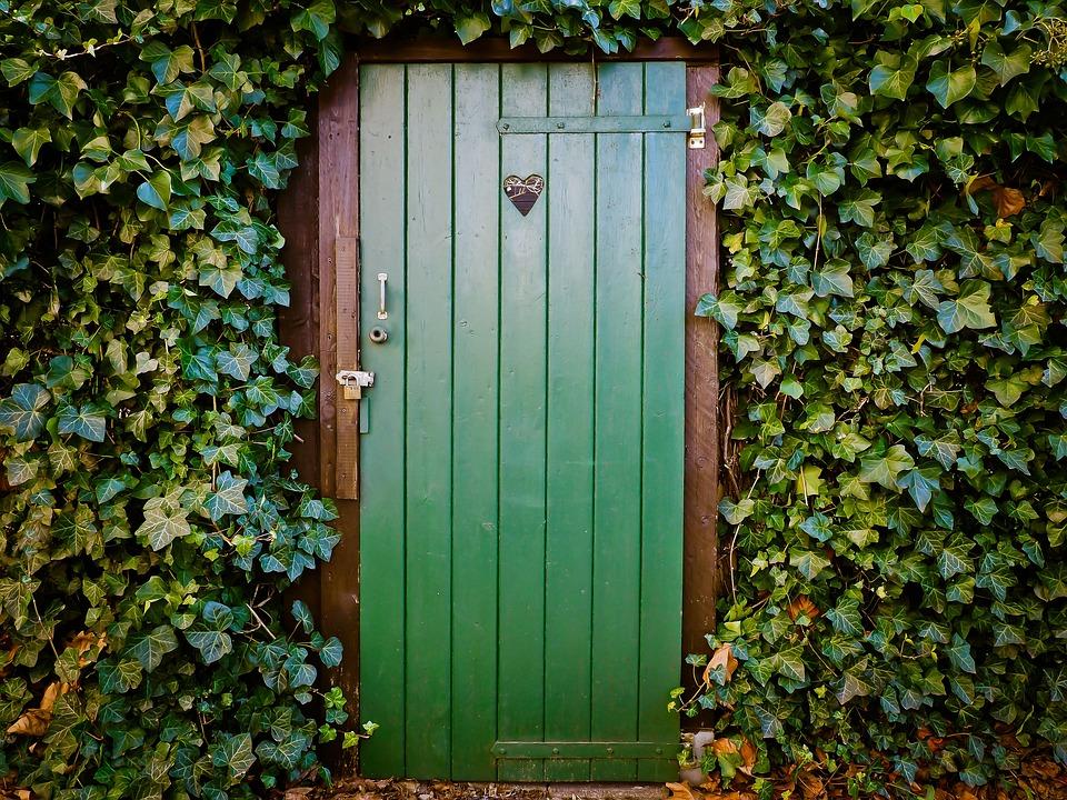 ドア, トイレのドア, 平和で静かな, 古いドア, 木, ブレーク アップ, たたり, 古い, アイビー