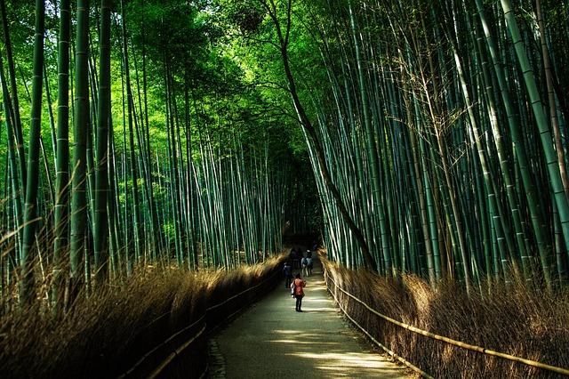 京都移住計画の立て方 京都移住する際の仕事探し・コンシェルジュ