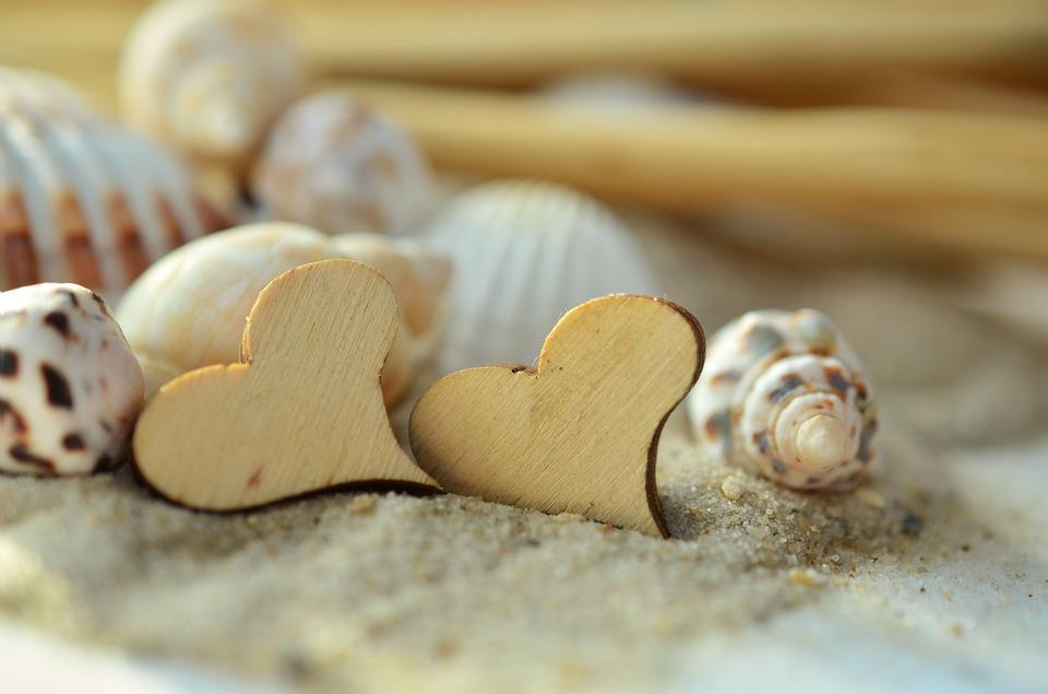 砂, 中心部, 木, ムール貝, ビーチ, シンボル, 愛, 休日, 夏, 恋人, 愛しています