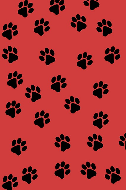 Tiger paw print background - photo#8