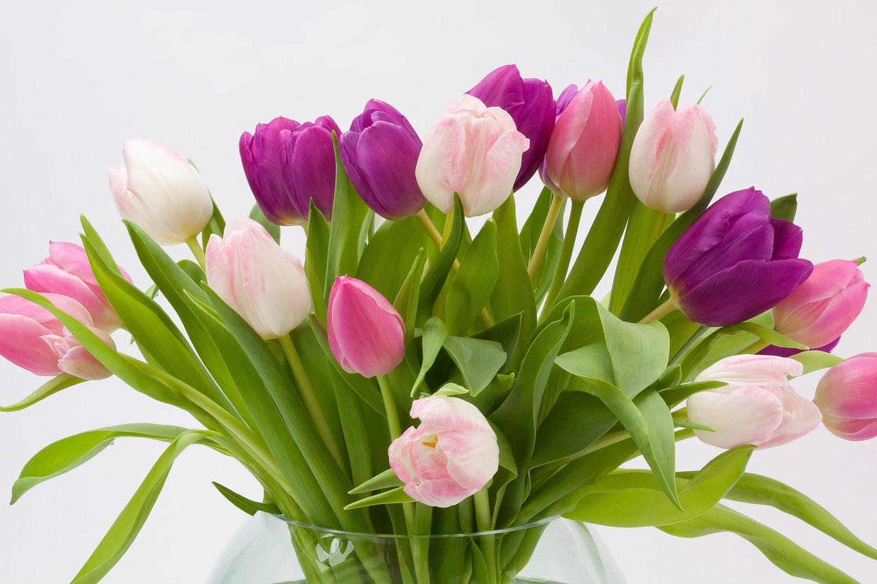 открытка весенние цветы фото еще