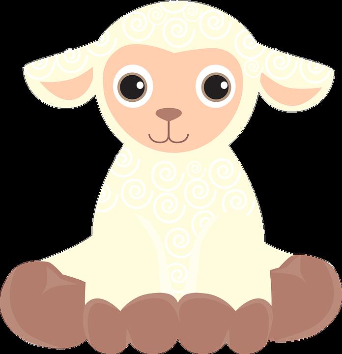 Koyun, Kuzu, Yavru, Dalga, Çiftlik, Ev, Sürü, Sevimli