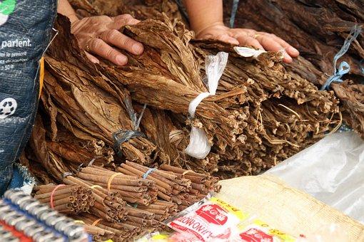 Tobacco Leaves Leaf Dried Brown Unhealthy