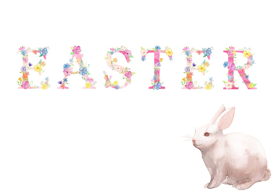 Free Illustration Easter Spring Bunny Rabbit Free