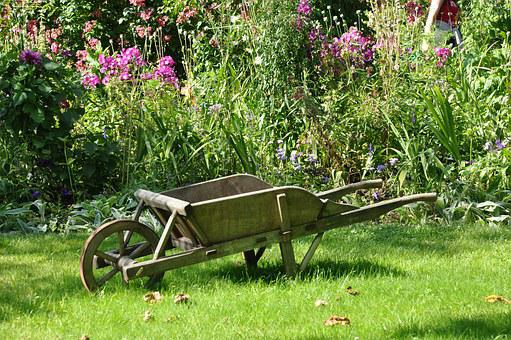Wheelbarrow, Garden, Vegetable Garden