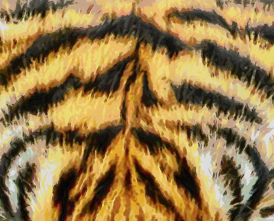 Tier Fell Textur Tiger Kostenloses Bild Auf Pixabay