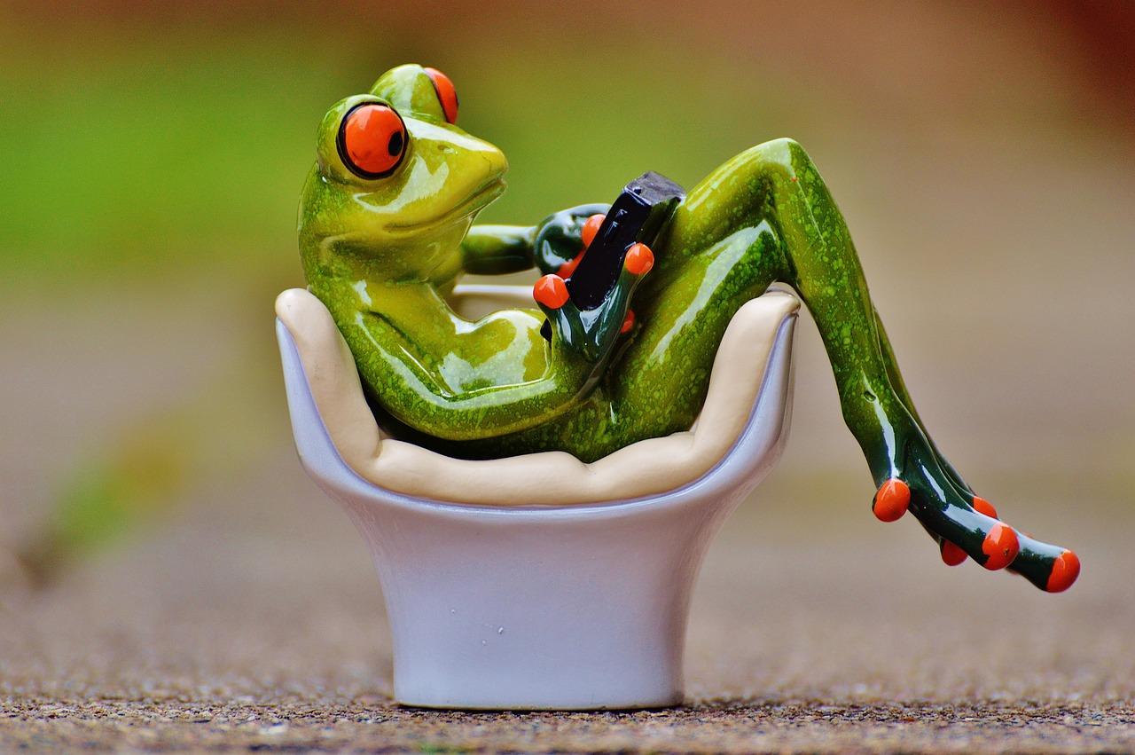 Открытки с лягушками фото, открытки