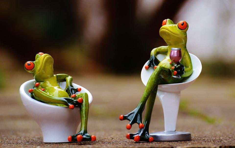 Frosch Sessel Gemütlich Zu Kostenloses Foto Auf Pixabay