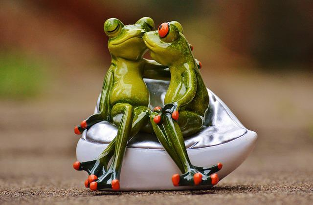 Free photo: Frogs, Lovers, Funny, Together - Free Image on Pixabay ...