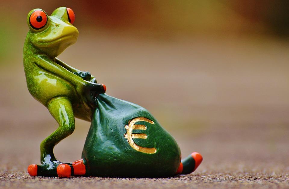 Rana, Dinero, Euro, Bolsa, Bolsa De Dinero, Gracioso