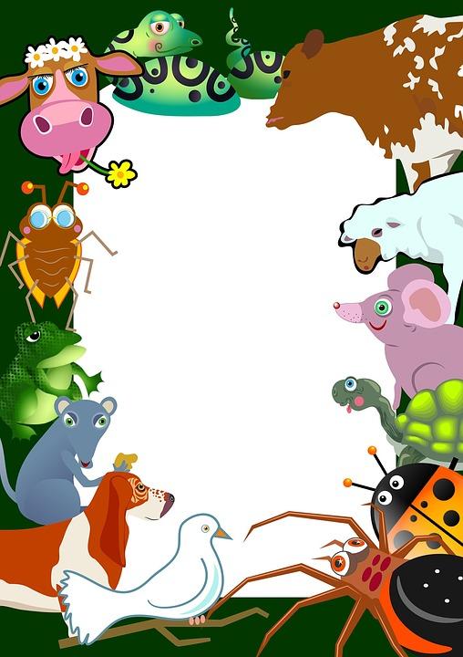 Animals Wild Life · Free image on Pixabay