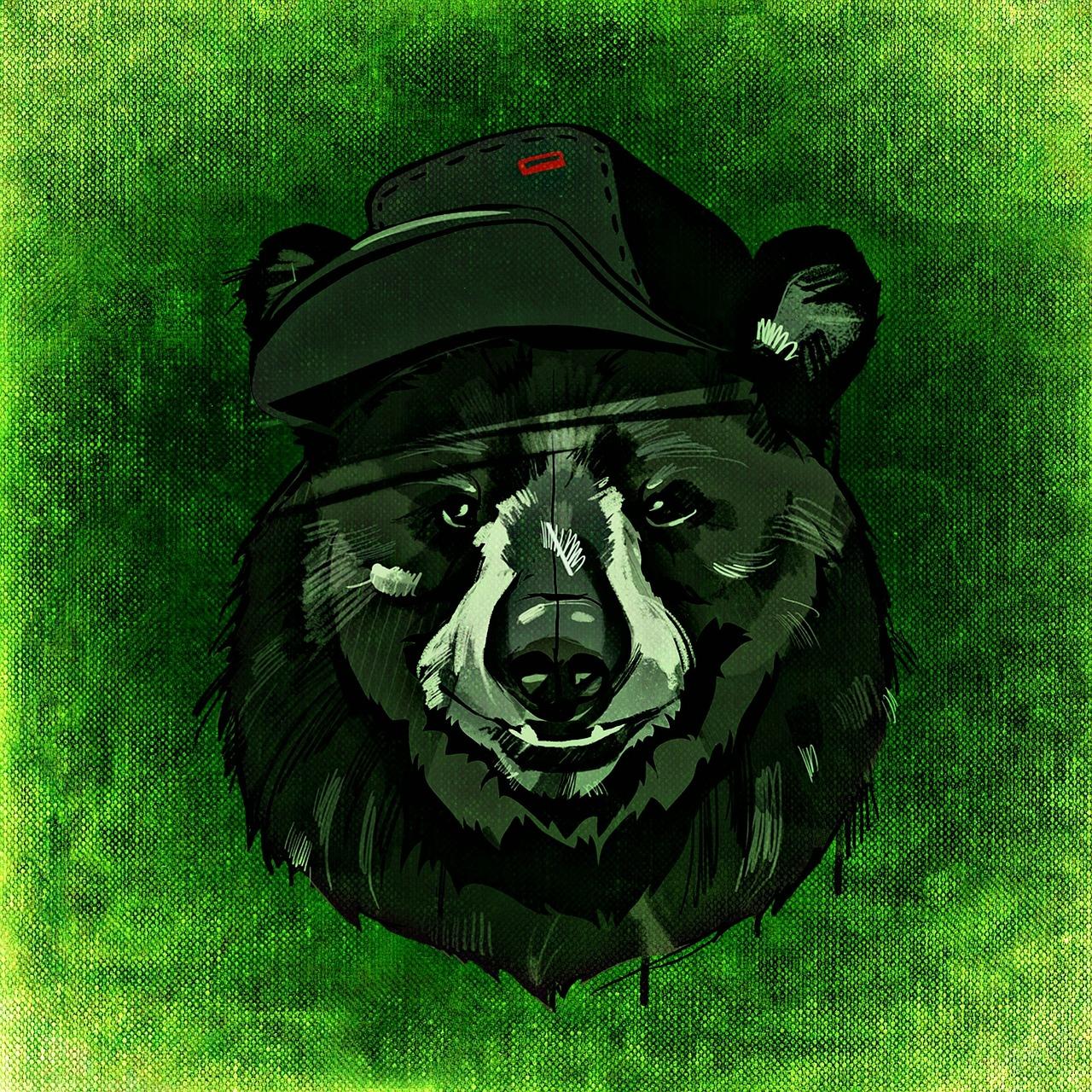 Картинки медведи крутые, венецией