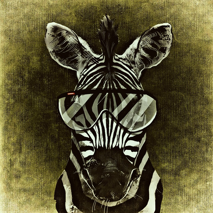 free illustration zebra cool abstract funny free image on pixabay 1235245. Black Bedroom Furniture Sets. Home Design Ideas
