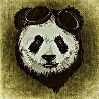 900 Gambar Animasi Panda Keren  Gratis