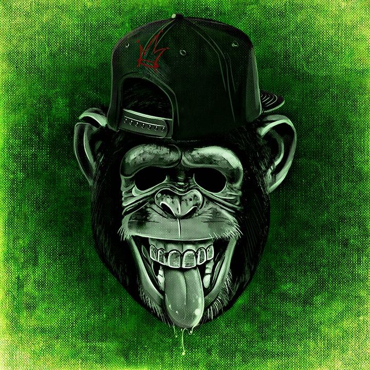 60d0b86404bc1 Macaco Chimpanzé Engraçado - Imagens grátis no Pixabay