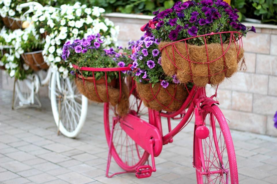 Vélo Floral Jardin Décoration · Photo gratuite sur Pixabay