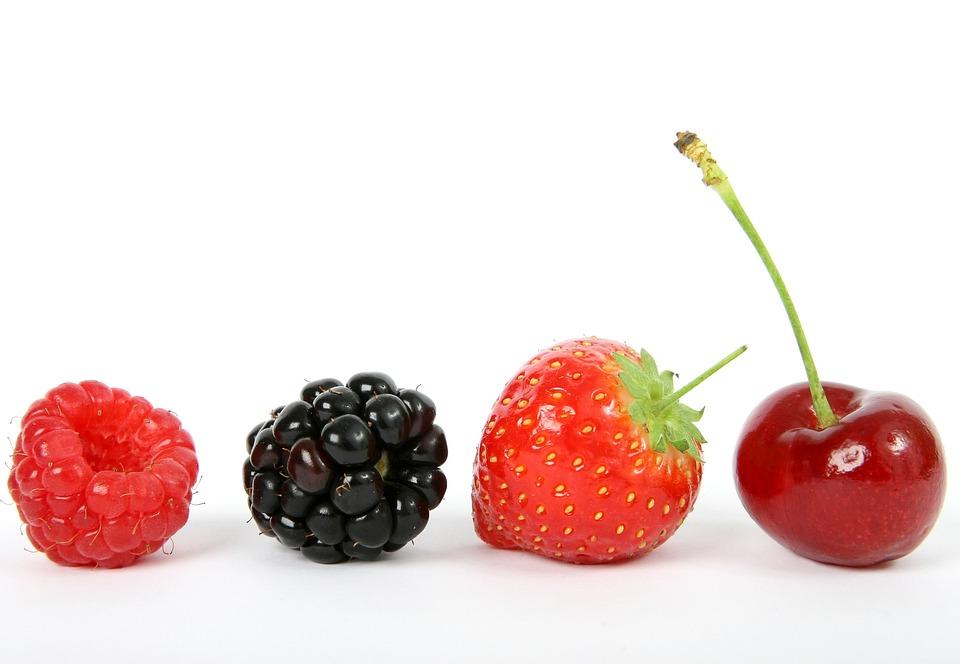 berry blackberry cherry free photo on pixabay