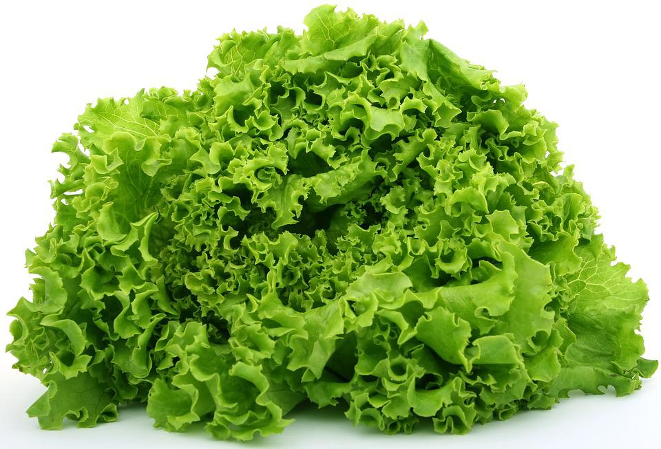 Lettuce, Food, Fresh, Green, Healthy, Natural, Raw